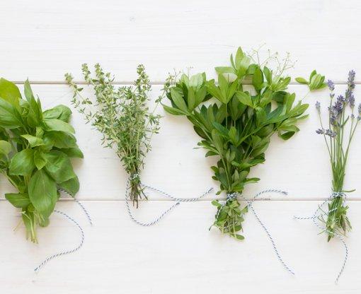 Receptek zöldfűszerekkel
