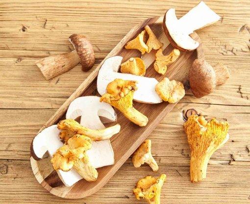 Őszi receptek gombával